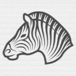 -Zebra stroke-